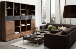 living-room-shelf-582x380